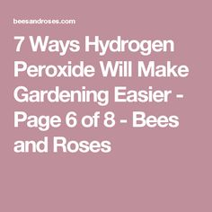 7 Ways Hydrogen Peroxide Will Make Gardening Easier - Page 6 of 8 - Bees and Roses