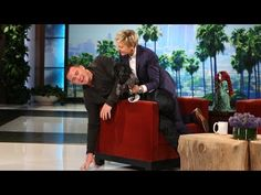 Channing Tatum reveals his biggest fear, and Ellen taunts him with it - Entertainment - TODAY.com