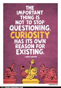 The important thing is to not stop questioning. Curiosity has its own reason for existing.