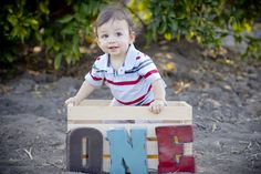 Denise Michele Photography: First birthday photo ideas