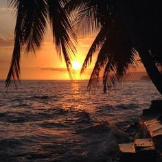 Haiti Travel Tips for the First-Time Visitor - G Adventures. Haiti Tourism, Famous Places In France, Beach At Night, Venice Travel, Beach Aesthetic, Tropical Beaches, Travel Design, Africa Travel, Romantic Travel