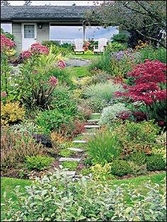 Drought tolerant gardens can still be lush | The Seattle Times