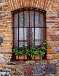 Window Flowers, Colonia del Sacramento, Uruguay