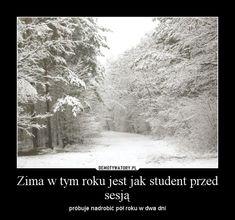 Zima w tym roku jest jak student przed sesją – próbuje nadrobić pół roku w dwa dni
