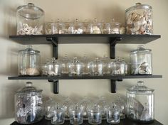 displaying sea shells in jars