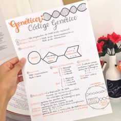 Need a gift ideas for cooks? ✩ Check out this list of creative present ideas for people who are into cooking College Notes, School Notes, School Motivation, Study Motivation, Dna E Rna, Mental Map, Study Organization, Bullet Journal School, School Study Tips