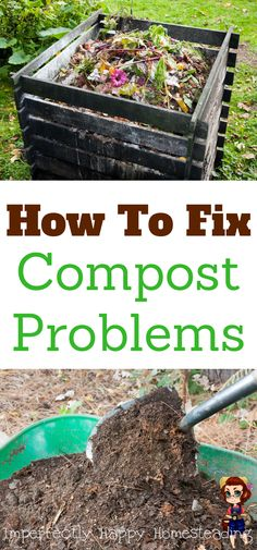 How to Fix Compost Problems for the Best Soil for Your Garden!