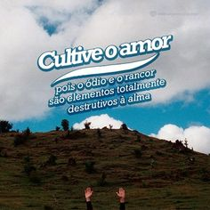 Cultive o amor. #mensagenscomamor #frases #amor #cultivar #ódio #rancor #destrutitvos #alma
