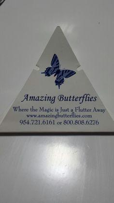 Butterfly release! Cute Wedding Ideas, Wedding Games, Wedding Planning, Wedding Inspiration, Wedding Bells, Wedding Reception, Our Wedding, Dream Wedding, When I Get Married