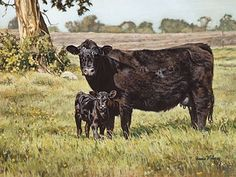 Shop Black Beauties art print: A stunning Black Angus cow standing protectively by her adorable newborn calf with acres of farmland as a backdrop surrounded by trees and a pale blue spring sky by rural American artist, Bonnie Mohr Beef Cattle, Black Cow, Baby Cows, Cow Painting, Cow Art, Art Prints For Sale, Western Art, Livestock, Farm Animals