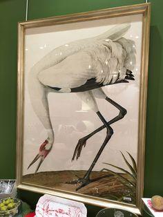"Oiseau Framed Print. 39"" x 54"". $780.00.  #waterfowl"