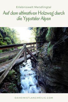 Im spektakulären Mendling Tal vereinigt sich die spektakuläre Natur der Niederösterreichischen Alpen mit einem Freilichtmuseum und der letzten intakten Holztriftanlage in Europa. Europe Travel Guide, Waterfall, Outdoor, Explore, Group, Board, Small Places, Hiking Trails, Travel Inspiration