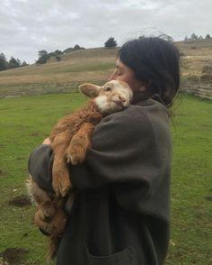 Fluffy Cows, Fluffy Animals, Cute Baby Animals, Farm Animals, So Cute Baby, Baby Lamb, Interesting Animals, Baby Goats, Tier Fotos