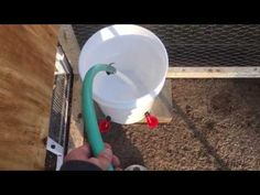 How To Make A Chicken Waterer Using 5 Gallon Bucket - Easy DIY - YouTube