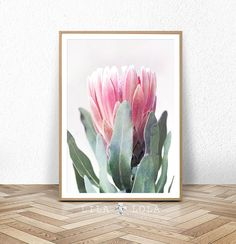 Contemporary wall art and home of the Peekaboo by LILAxLOLA Art Floral, Art Mural Floral, Artwork Prints, Wall Prints, Poster Prints, Printable Poster, Printable Wall Art, Flower Wall, Flower Prints