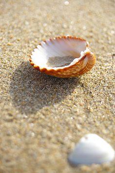 14 fotografías de playa