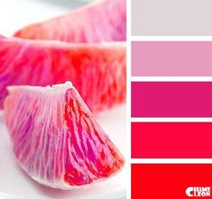 Red and pink color scheme Red Colour Palette, Pink Color Schemes, Color Palate, Color Combinations, Deco Design, Color Blending, Color Stories, Color Swatches, Color Theory