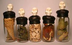 Poison plant spirit vessels - datura, bittersweet, mandrake, fly agaric, and henbane