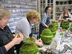 Arte Floral, Easter Wreaths, Plants, Pictures, Inspiration, Xmas Ideas, Sport, Advent, Flowers