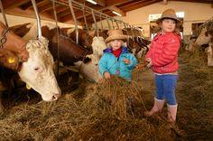 L' Agritur Galeno: turismo e agricoltura di qualità. - Girovagando in Trentino