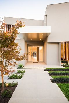 Warm minimalist landscape design in Caulfield by Cos Design The landscape integrates perfectly with the architecture, incorporating the warmth of timber battens throughout plus the effective use of cutout mass plantings in the turf and surrounds.