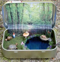 "Garden in an Altoid tin -- It makes me think of C.S. Lewis's experience with his brother Warnie's miniature garden in a  biscuit tin. ""Surprised by Joy"" by C.S. Lewis."