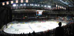 Motorpoint Arena. Sheffield Steelers. Sheffield Steelers, Ice Hockey, Sports, Hs Sports, Sport, Hockey Puck, Hockey