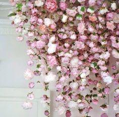 Beautiful flower backdrop