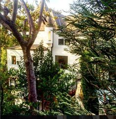Beautiful morning at the castle. Hollywood Hills, Old Hollywood, City Block, House Of Beauty, Castle House, Beautiful Morning, From The Ground Up, Castles, Beautiful Homes