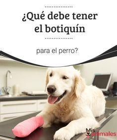 ¿Qué debe tener el botiquín para el perro? Conoce qué no debe faltar en el botiquín para el perro.Te ayudará a actuar ante situaciones que pongan en riesgo la salud o la vida de tu mascota. #consejos #botiquín #riesgo #consejos