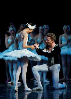 "Proposal - Erica De La O (Odette/Odile) and Kristopher Wojtera (Siegfried) Louisville Ballet - she said ""yes"""