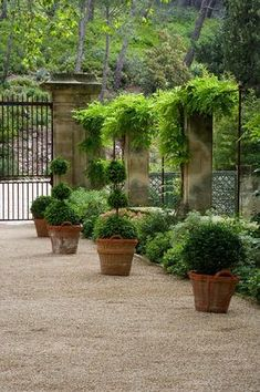 PIERREDON GARDEN, PROVENCE, FRANCE - DESIGNER DOMINIQUE LAFOURCADE~ Photography by Clive Nichols