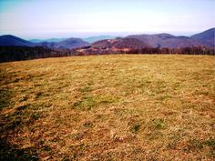 Atop some bald in Tennessee