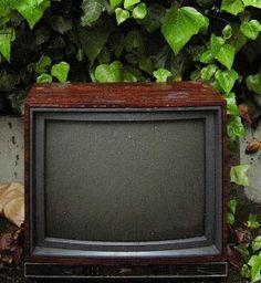 proyecto sin tv http://familialibre.com/blog/6140/mi-proyecto-sin-television