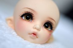 Preview - FL Pukifee Ante for Monica details | Flickr - Photo Sharing!