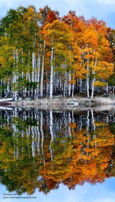 Autumn's Reflections in Colorado (Photo by Greg Boratyn)
