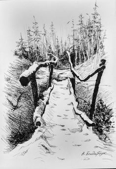 Nature Sketches Pencil, Tree Drawings Pencil, Landscape Pencil Drawings, Landscape Sketch, Art Drawings Sketches, Landscape Art, Forest Sketch, Forest Drawing, Nature Drawing