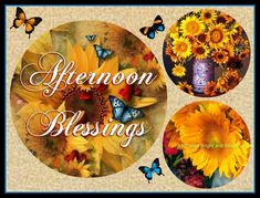 Afternoon Delight, Blessed, Autumn Fall, Bright, Beautiful
