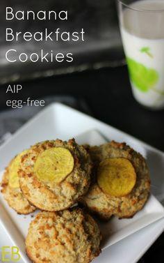 Banana Breakfast Cookies {AIP, egg-free, Paleo, resistant starch, collagen~ Easy…