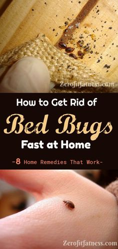 How to Get Rid of Bed Bugs Fast - 8 Home Remedies That Work.Are you having bed bugs infestation at h Bed Bug Remedies, Home Remedies, Natural Remedies, Herbal Remedies, What Kills Bed Bugs, Bed Bugs Essential Oils, Bed Bug Spray, Rid Of Bed Bugs, Buga