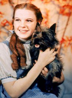 Judy Garland - Biography - Film Actress, Singer, Television Actress, Pin-up - Biography.com