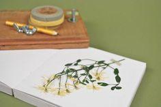 Botanical Press DIY.