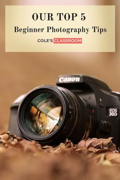 Beginner Photography Tips: Important and basic principles for taking great professional quality photos by beginners.  Learn More at: https://www.colesclassroom.com/top-5-beginner-photography-tips/