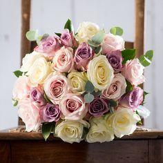 roses memory lane - Google Search