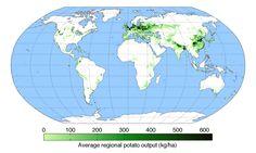 Potato production across the world. IRELAND SEEMS A LITTLE LIGHT ON ?????