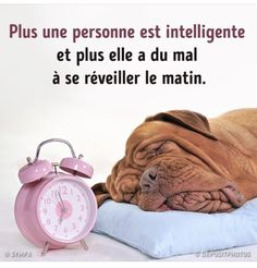 Ferrari, Facebook Sign Up, Alarm Clock, Chronograph, In This Moment, Accessories, French, Funny, Quotes