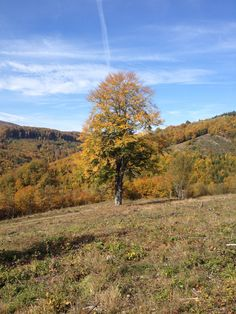 Fall in Slovakia