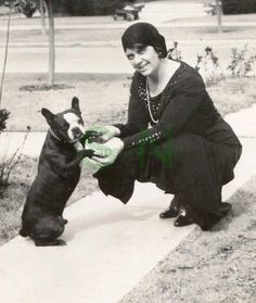 Vintage 1920's Photograph - Flapper Woman W/ Boston Terrier - Cute