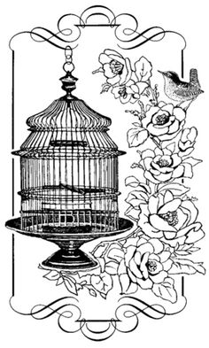136 best vintage birds butterflies images vintage images Hen Cage Design would like to draw something like this beautiful bird cage coloring sheets adult coloring