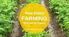 Top 10 Real Estate Geographic Farming Ideas